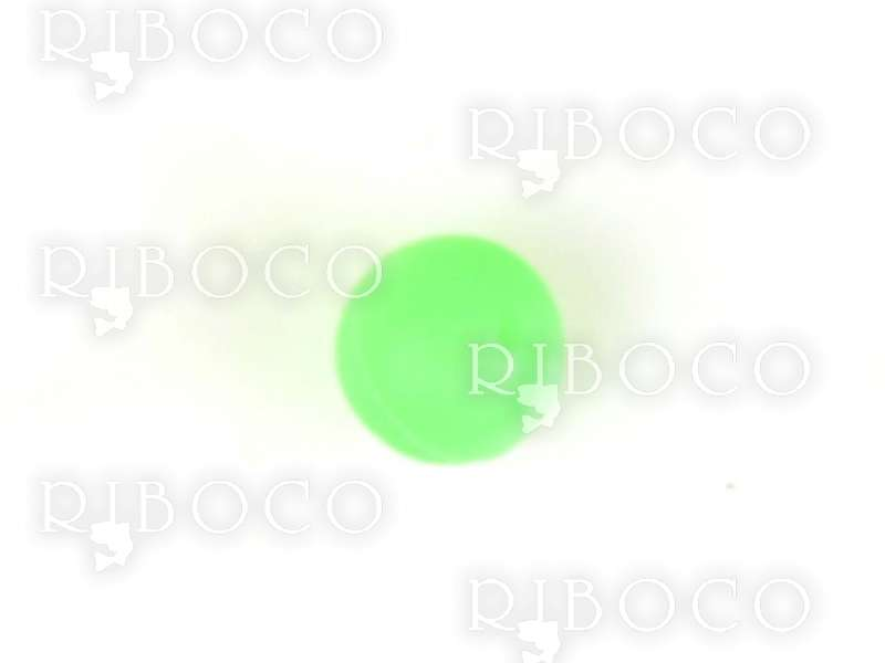 Каучуковови топчета флуоресцент CARP